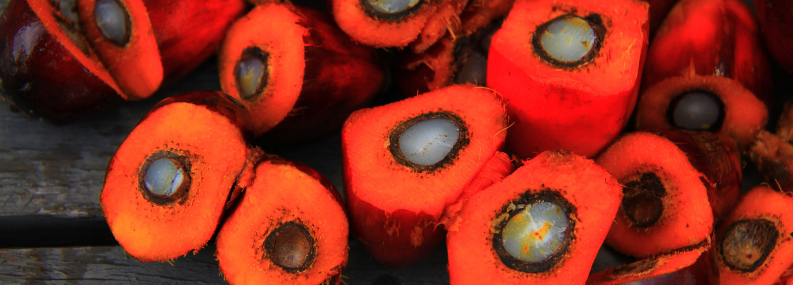 Opened oil palm fruits